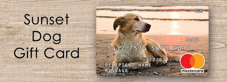 dog and sunset gift card