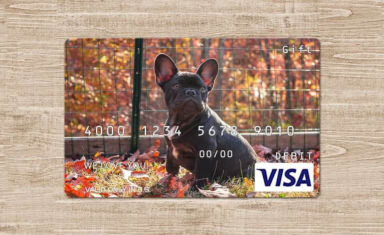 gift card with dog