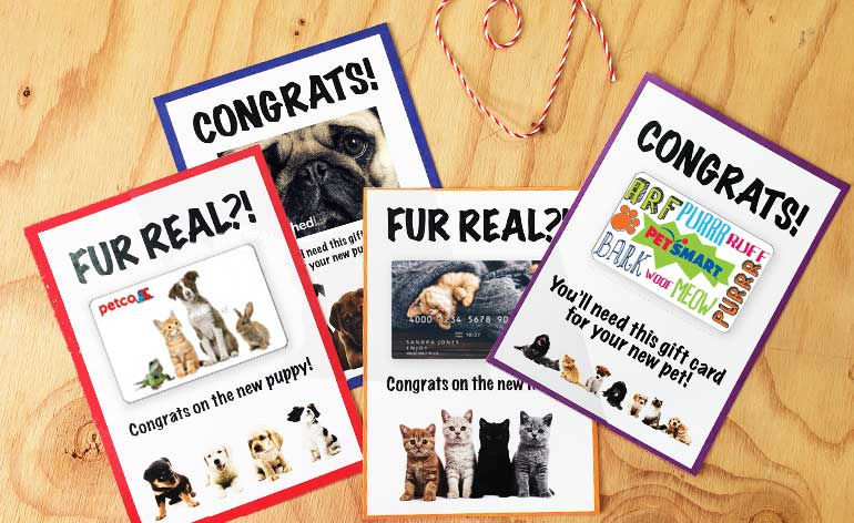 printable gift card holders for a pet